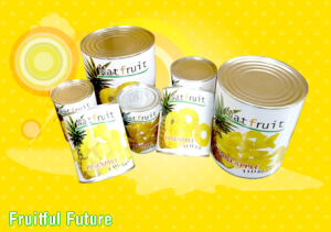 Natural-Fruit-pineapple
