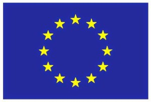 EUflag-5