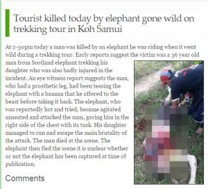 Samui-times-elephant-attack